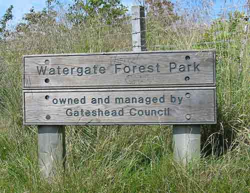 Watergate Forest Park